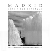 Madrid mira a sus estatuas